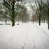 Winter in Boston Common