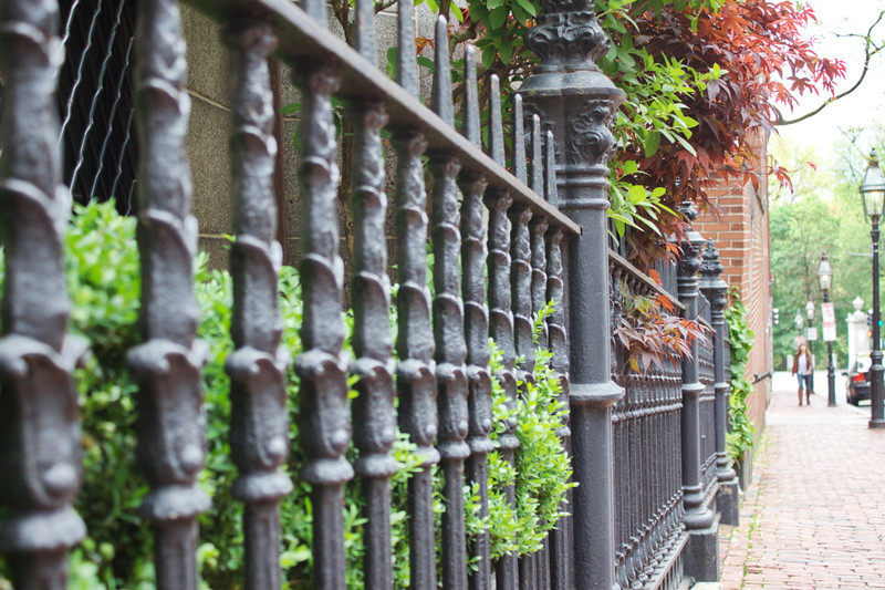 Beacon Hill Fence - 126/365