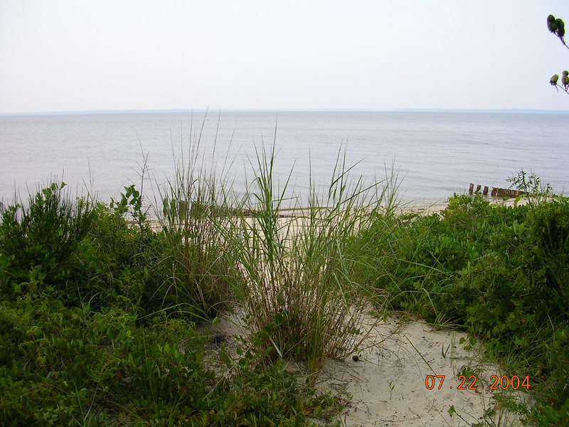 <h2>Secluded Beach</h2>Here someone (the Queen I assume) can have private access to a great view of the Pamlico Sound.  You may even be able to see the Outer Banks in the distance.