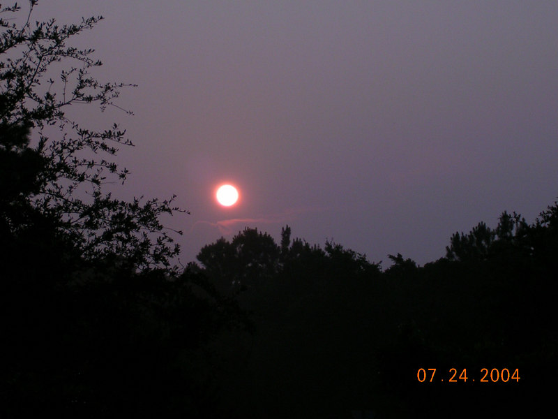 <h2>Opened a Window</h2>But it allowed me to wake up early enough to catch this...