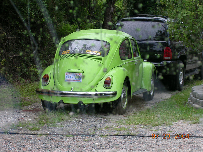 <h2>Punch Buggy Green!!</h2>