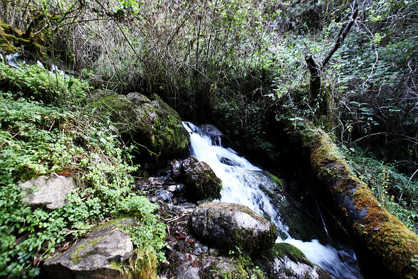 Began the second day hiking along a small stream.