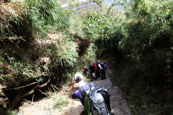 Walking down some of the millions of Inca steps on the 3rd day.