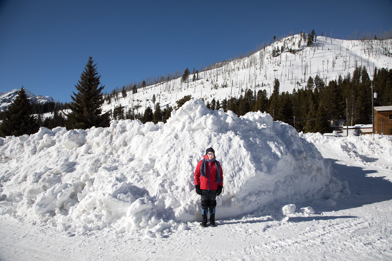 In Cooke City, the eastern terminus of US 212, (the only portion kept open in the winter for the school bus) Linda gives a scale to the snow mounds.