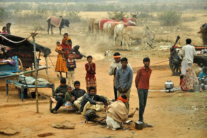 India '13 -  561