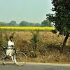 India '13 -  480
