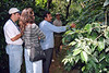 Touring the coffee plantation