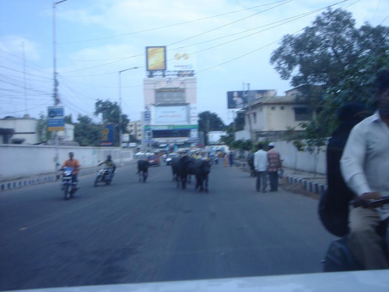 Hyderabad-2005-153