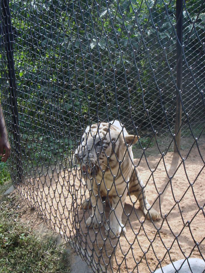 Hyderabad-2005-068