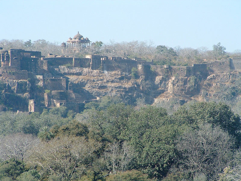 Ranthambore Fort from Ranthambore Park