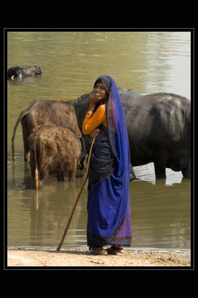 India Slide  076