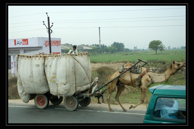 India Slide  024