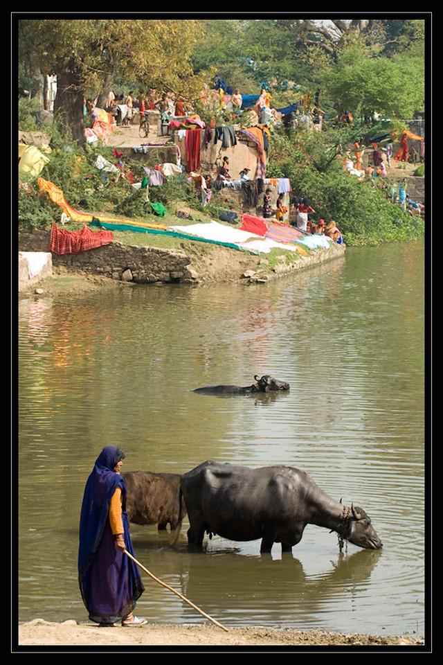 India Slide  075