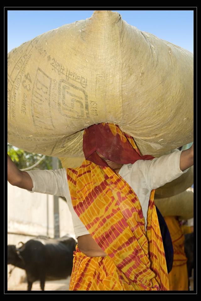 India Slide  089