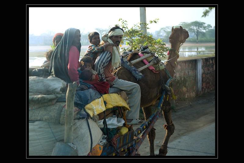 India Slide  030