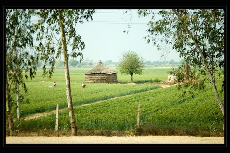India Slide  023