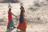 Women in the Tar desert, Rajasthan, India