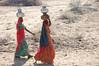 Women in the Tar desert, Rajasthan, India