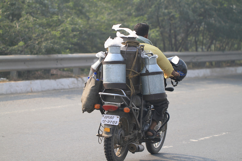 Trip to Agra - Milk Delivery