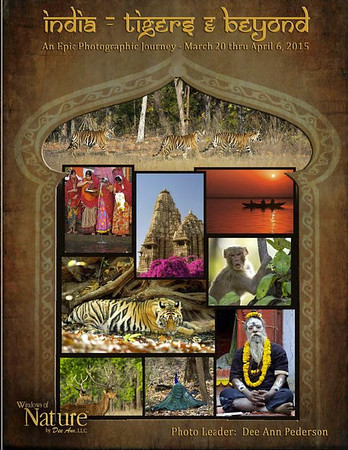 India-2015-smaller_group