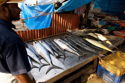 Fish market, Cochin, Kerala.