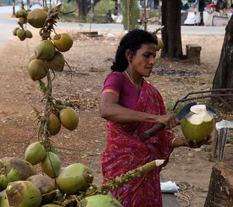 Woman selling coconuts, along the way to Cochin, Kerala.