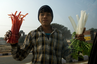 Vegetable seller on the road from Jaipur to Bikaner.