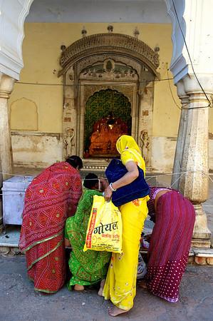 Monkey Temple, Galwar Bagh, Jaipur.