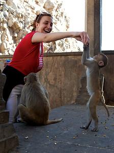 Anita feeding the monkeys, Monkey Temple, Galwar Bagh, Jaipur.