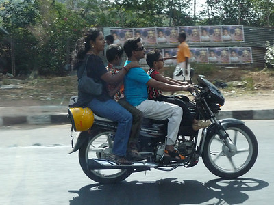 Another family of 4, haven't see 5 or 6 yet.  Note the helmet clipped to the back.  Doesn't do a lot of good back there.