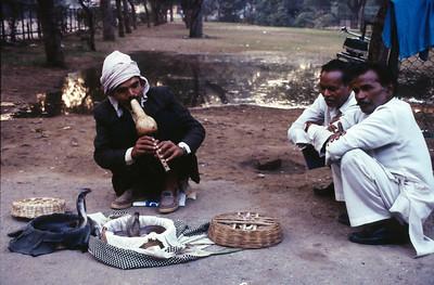 Snake tamer, New Delhi.