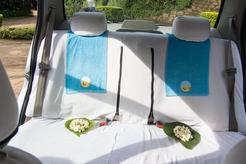 Lisa's chariot awaits...