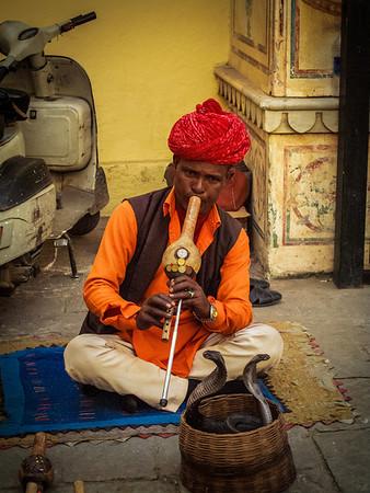 charming cobras, City Palace, Jaipur Rajhastan