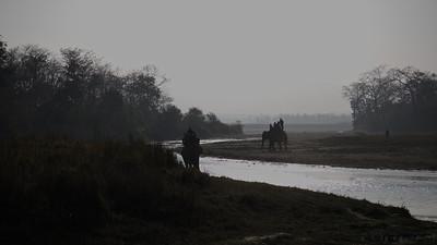 Elephant safari in Chitwan NP