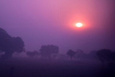 Early morning sunrise, taken through the thick glass of the train window as we headed towards Agra, the sun has a weird ring around it.  I wished the train would stop so I could get out and take some photos in the mist.