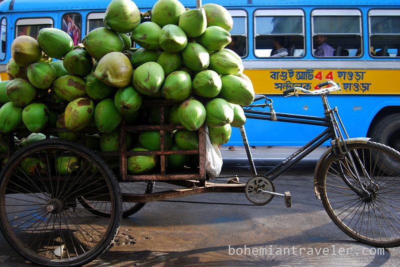 coconut calcutta