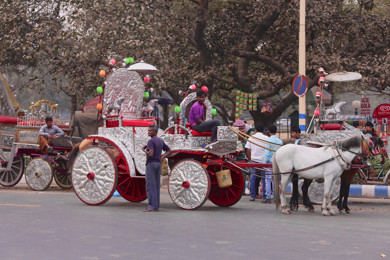 A classy carriage ride for the hard to impress girlfriend.<br /> EN8A4749