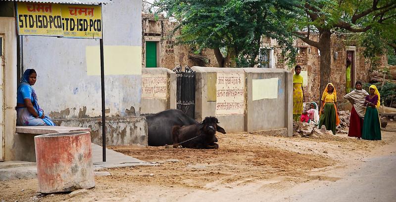 India_April 01, 2008__10