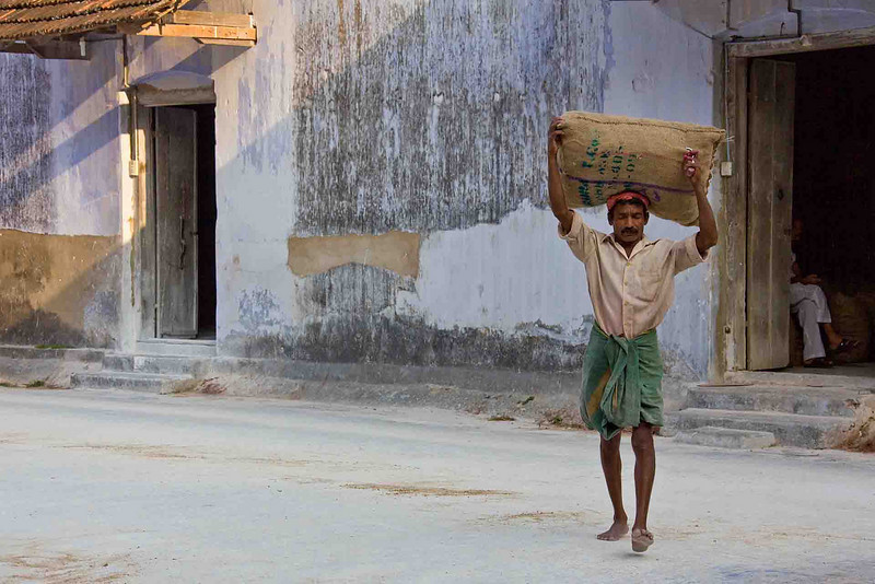 Carrying spices from the warehouse to a waiting truck for transportation all over the world.