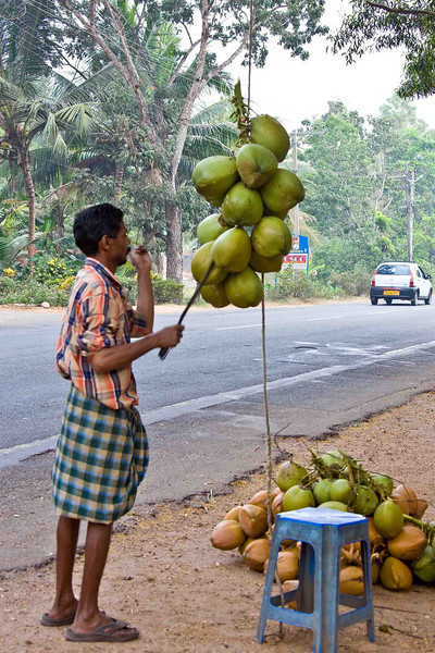 One of thousands of roadside fruit stands