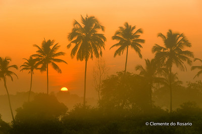 Sunrise shrouded by fog in Tamborim, South Goa, India