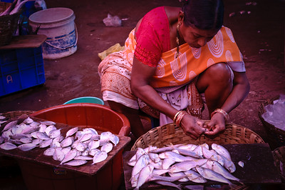 Fishmonger at the Mupusa Friday Market, Goa, India