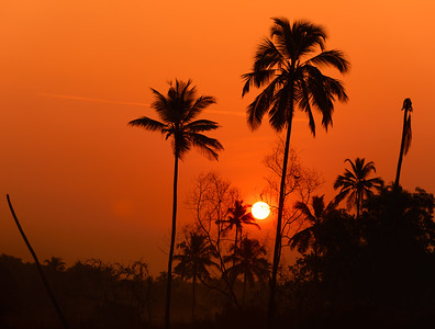Sunrise in Tamborim village in Cavelossim, Salcette Goa, India
