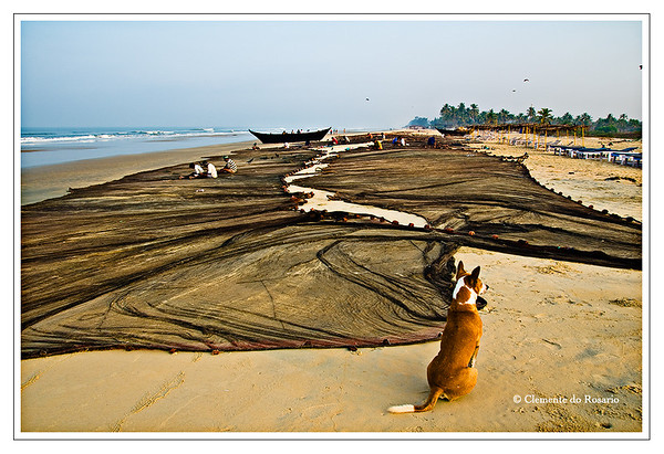 Traditional Goan Fishing Nets on Varca Beach, Goa, India