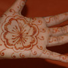 There was extra henna that I could take back with me.  When I got back home, I tried it out on the kids.