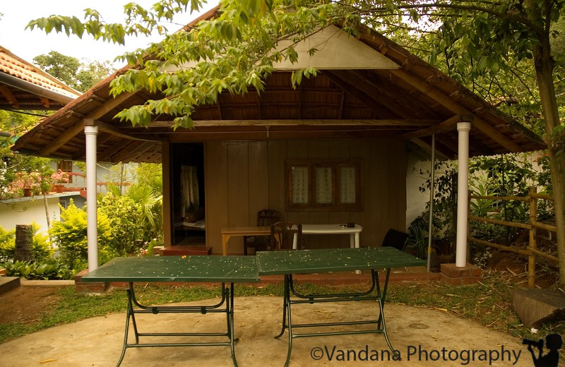 We stay at this coffee plantation guest house in Iruppu Falls near by. A simple 1 bed log cabin - every coffee plantation here seems to have one.