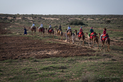 Camel ride through Thar Desert