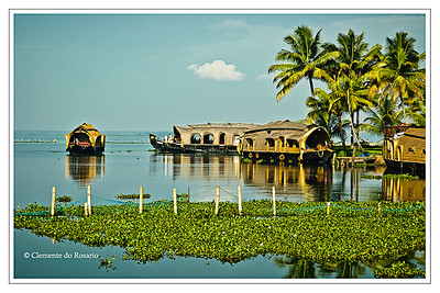 Kerala Houseboats, also known as Ketuvalloms, at Kumarakom Lake Resort, Kerala, India File Ref: Kerala-2006 112R