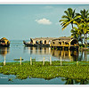 Kerala Houseboats, also known as Ketuvalloms, at Kumarakom Lake Resort, Kerala, India<br /> File Ref: Kerala-2006 112R