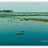 A view from Kumarakom Lake Resort of Vembanada Lake, largest lake in Kerala, India<br /> File Ref: Kerala-2006 108R